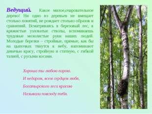 Ведущий. Какое милое,очаровательное дерево! Ни одно из деревьев не вмещает ст