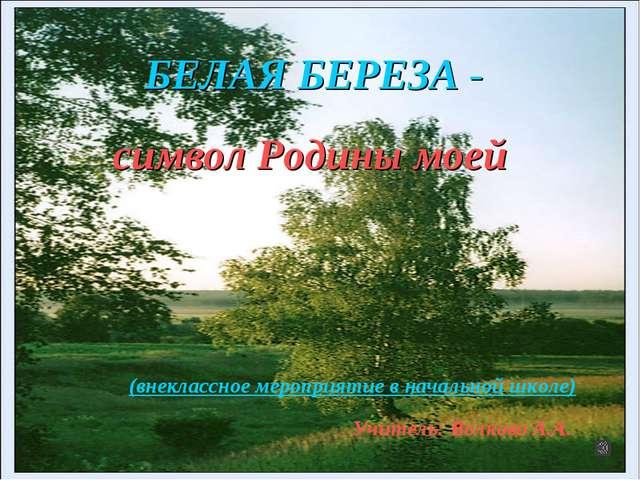 Белая береза - БЕЛАЯ БЕРЕЗА - символ Родины моей (внеклассное мероприятие в н...