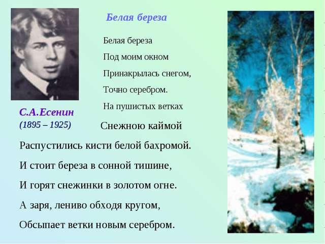 С.А.Есенин Белая береза Под моим окном Принакрылась снегом, Точно серебром. Н...