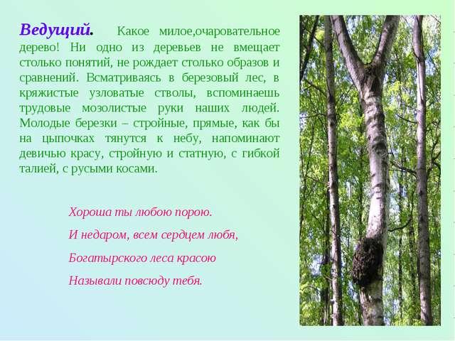 Ведущий. Какое милое,очаровательное дерево! Ни одно из деревьев не вмещает ст...