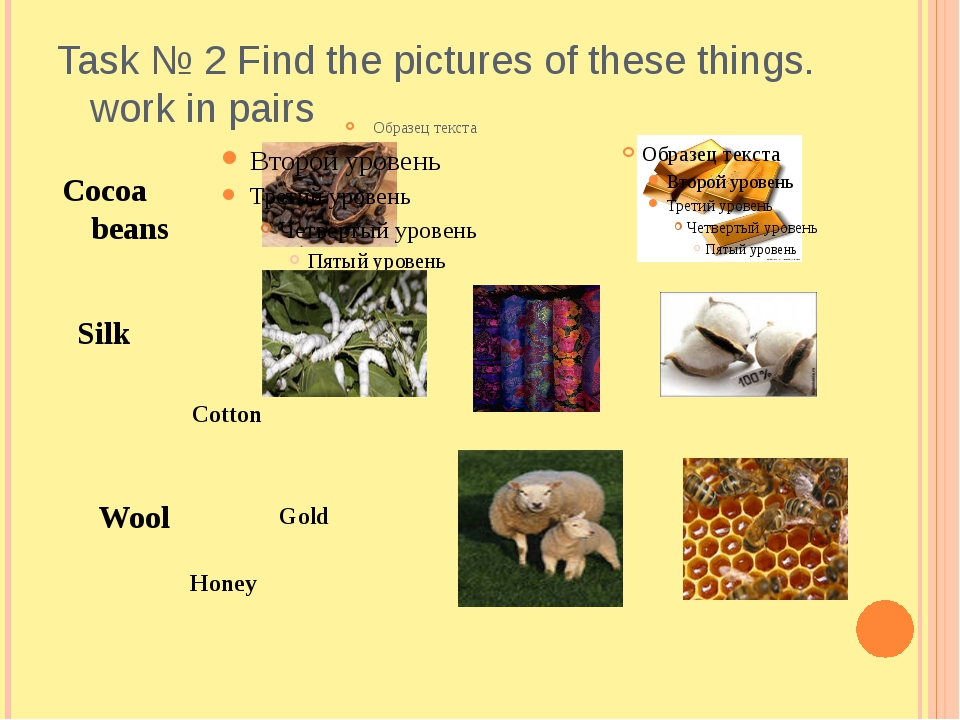 Task № 2 Find the pictures of these things. work in pairs Cocoa beans Wool Si...