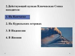 2.Действующий вулкан Ключевская Сопка находится: На Камчатке На Курильских о