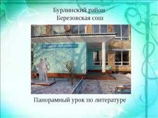 Бурлинский район Березовская сош Панорамный урок по литературе