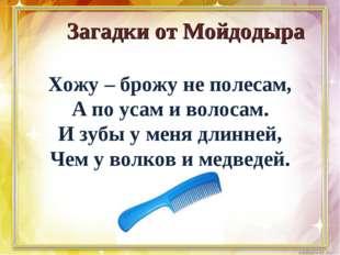 Загадки от Мойдодыра Хожу – брожу не полесам, А по усам и волосам. И зубы у