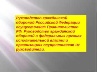 Руководство гражданской обороной Российской Федерации осуществляет Правительс