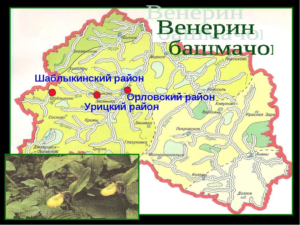 Орловский район Урицкий район Шаблыкинский район
