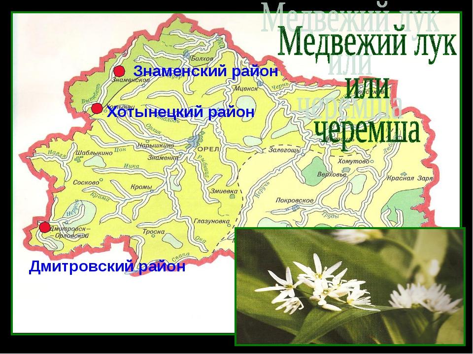 Хотынецкий район Знаменский район Дмитровский район