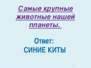 Часть русского костюма замужних женщин панёва это: 1) Рубаха 3) юбка 2)Голов