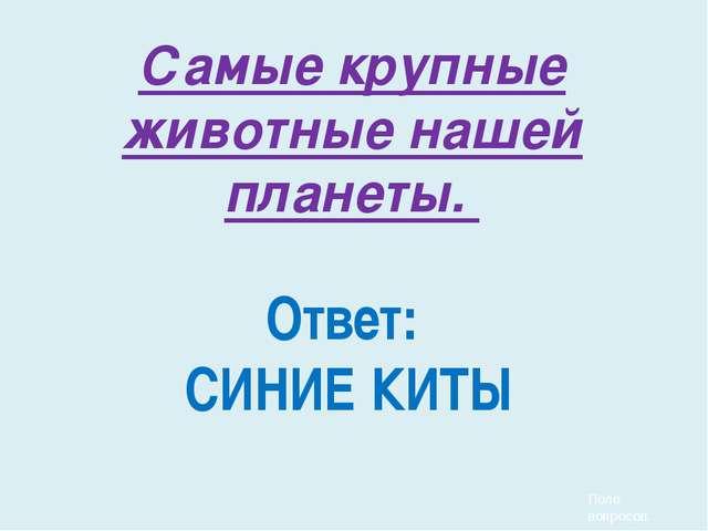 Часть русского костюма замужних женщин панёва это: 1) Рубаха 3) юбка 2)Голов...