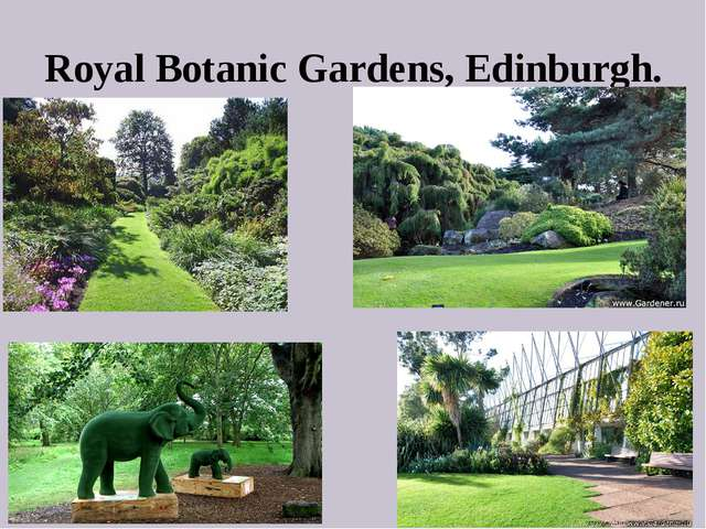 Royal Botanic Gardens, Edinburgh.