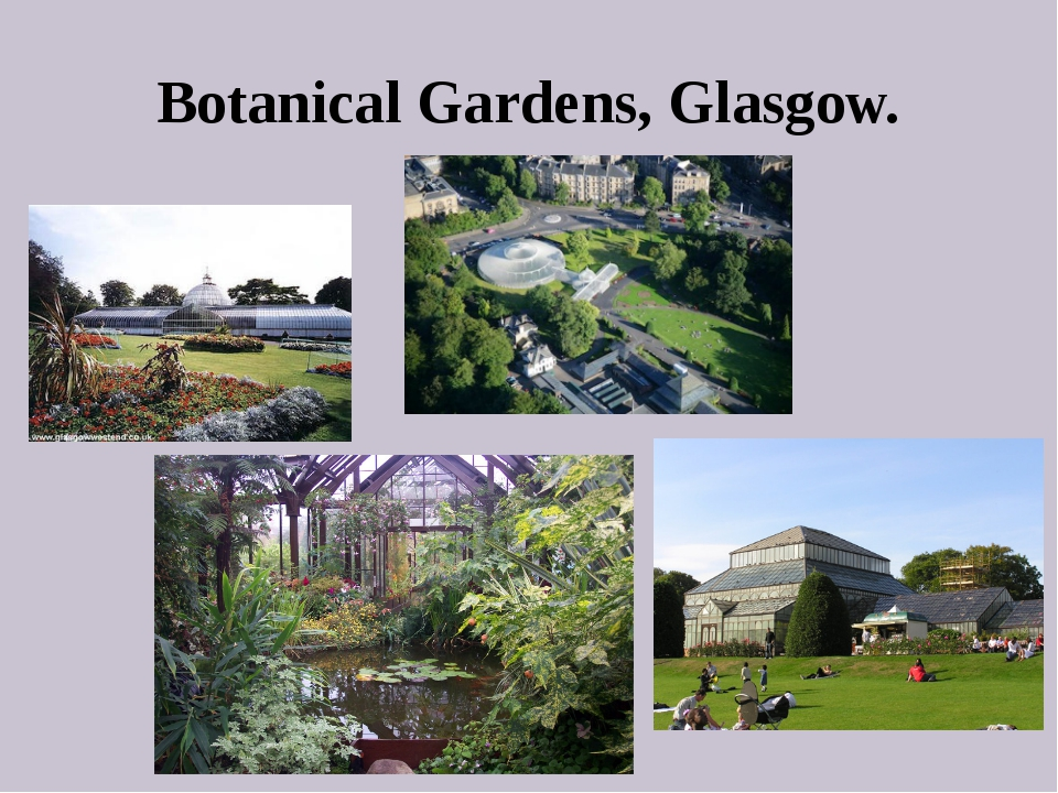 Botanical Gardens, Glasgow.