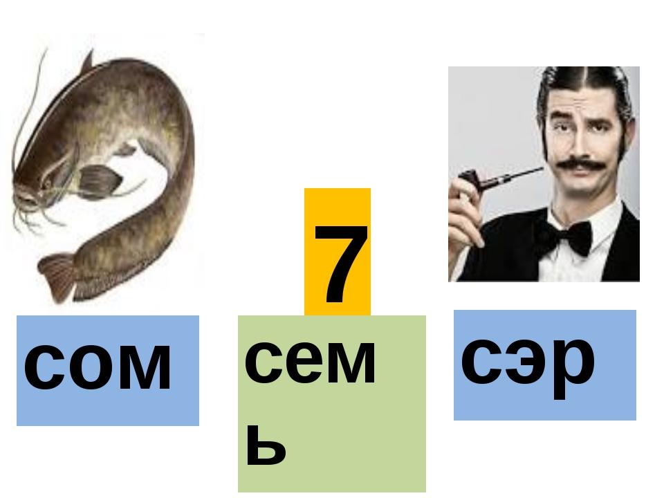 7 сом семь сэр