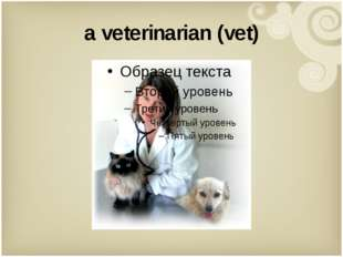 a veterinarian (vet)