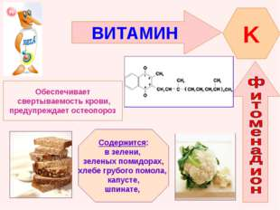 ВИТАМИН K Обеспечивает свертываемость крови, предупреждает остеопороз Содержи