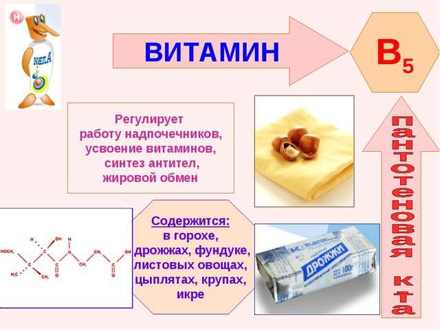 ВИТАМИН B5 Регулирует работу надпочечников, усвоение витаминов, синтез антите...