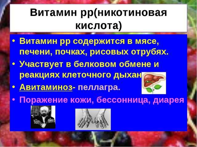 Витамин рр(никотиновая кислота) Витамин рр содержится в мясе, печени, почках,...