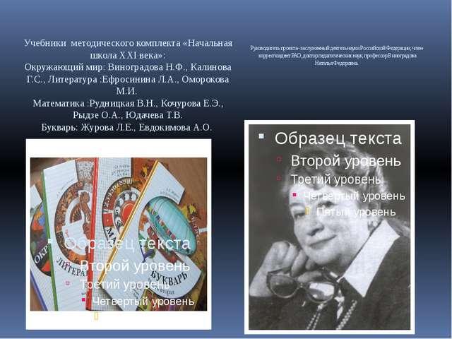 Руководитель проекта - заслуженный деятель науки Российской Федерации, член-к...