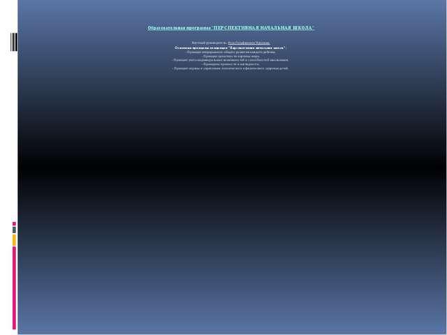 """Образовательная программа""""ПЕРСПЕКТИВНАЯ НАЧАЛЬНАЯ ШКОЛА"""" Научный руководител..."""