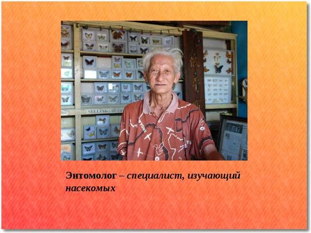 Энтомолог – специалист, изучающий насекомых