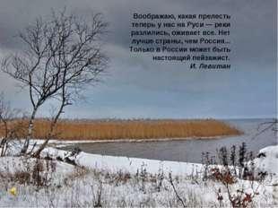 Воображаю, какая прелесть теперь у нас на Руси — реки разлились, оживает все.