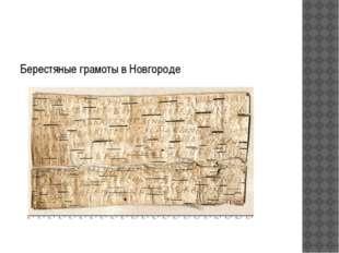 Берестяные грамоты в Новгороде