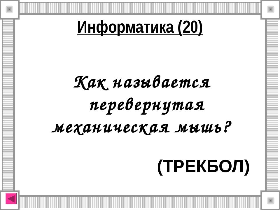 Как называется перевернутая механическая мышь? (ТРЕКБОЛ) Информатика (20)