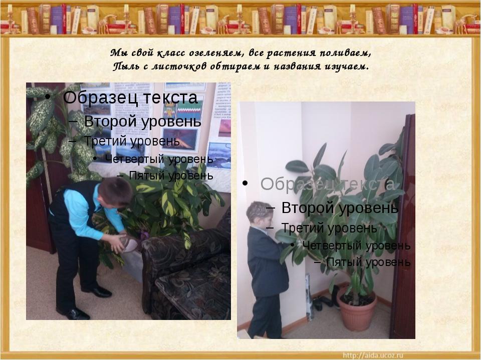 Мы свой класс озеленяем, все растения поливаем, Пыль с листочков обтираем и...
