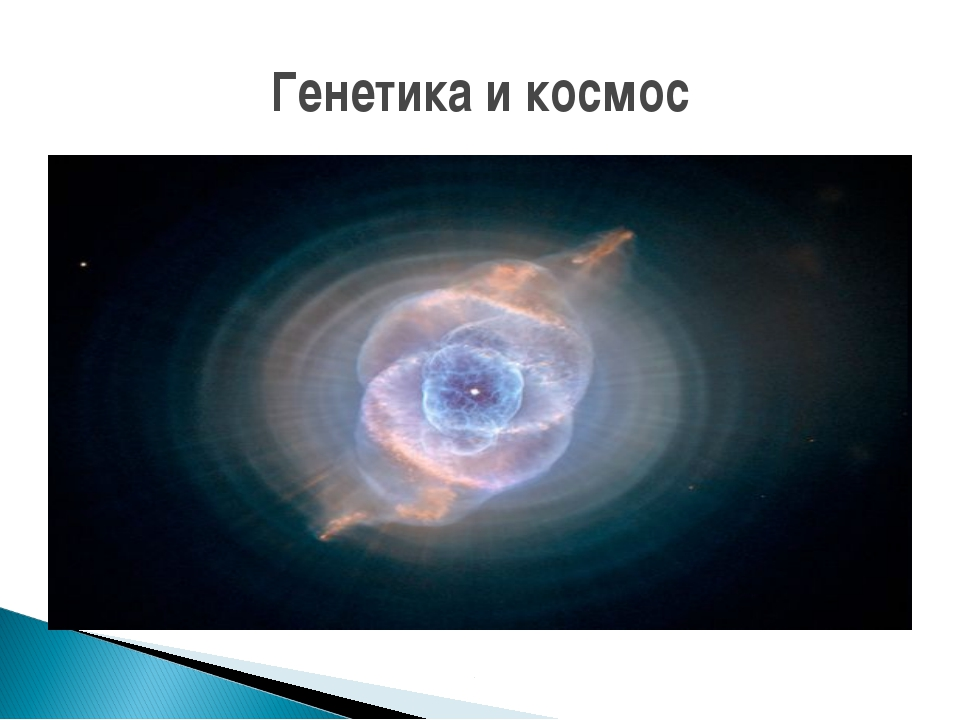 Генетика и космос