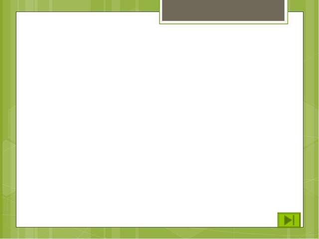 7. Слайд жасауға арналған программа A) MS Word В) Paint C) MS PowerPoint D) M...