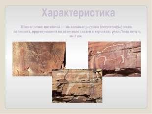 Характеристика Шишкинские писаницы—наскальные рисунки (петроглифы) эпохи па