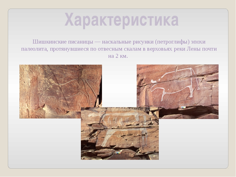 Характеристика Шишкинские писаницы—наскальные рисунки (петроглифы) эпохи па...