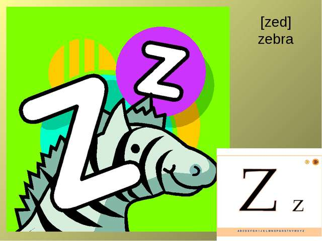 [zed] zebra