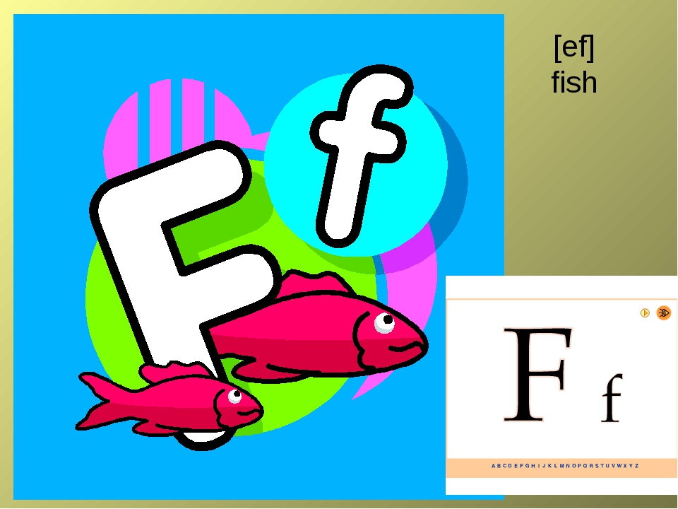 [ef] fish