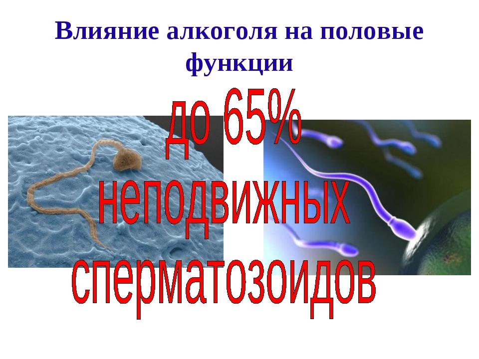 vliyanie-alkogolya-na-kachestvo-spermi
