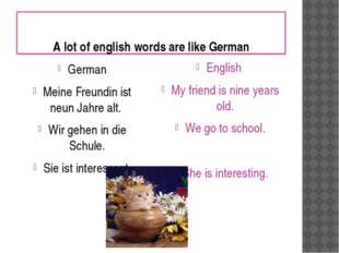 A lot of english words are like German German Meine Freundin ist neun Jahre a