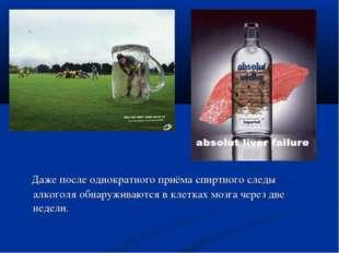 Даже после однократного приёма спиртного следы алкоголя обнаруживаются в кле