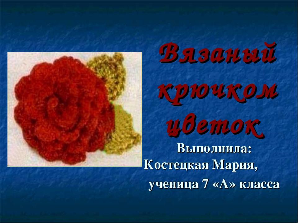 Вязаный крючком цветок Выполнила: Костецкая Мария, ученица 7 «А» класса