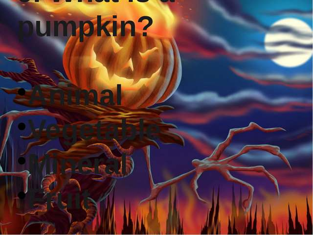 9. What is a pumpkin? Animal Vegetable Mineral Fruit
