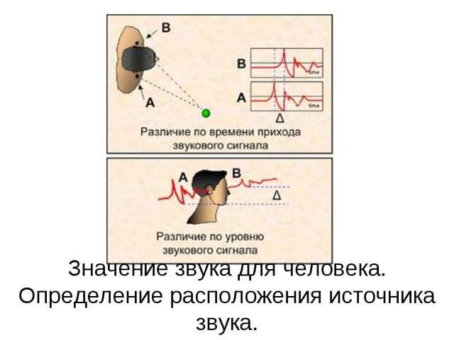 Значение звука для человека. Определение расположения источника звука.