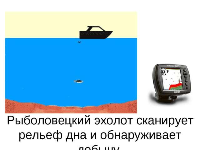 Рыболовецкий эхолот сканирует рельеф дна и обнаруживает добычу.