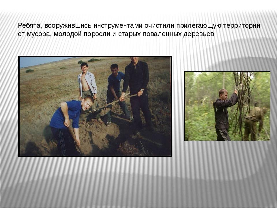 Ребята, вооружившись инструментами очистили прилегающую территории от мусора,...