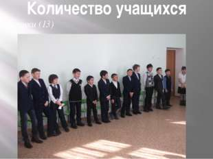 Количество учащихся Мальчики (13)