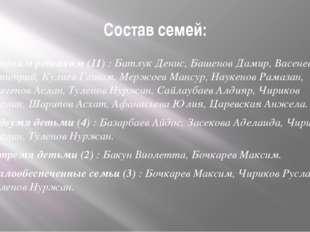 Состав семей: С одним ребенком (11) : Батлук Денис, Башенов Дамир, Васенев Дм