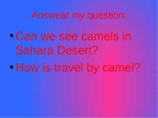 Answear my question: Can we see camels in Sahara Desert? How is travel by cam