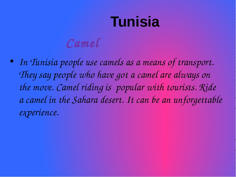 Tunisia Camel In Tunisia people use camels as a means of transport. They say...