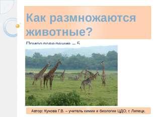Как размножаются животные? Природоведение – 5 Автор: Кунова Г.В. – учитель хи