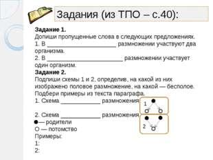 Задания (из ТПО – с.40): Задание 1. Допиши пропущенные слова в следующих пред