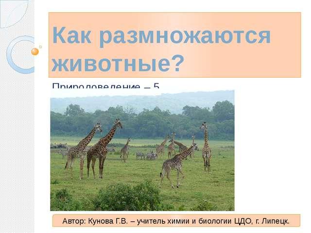Как размножаются животные? Природоведение – 5 Автор: Кунова Г.В. – учитель хи...