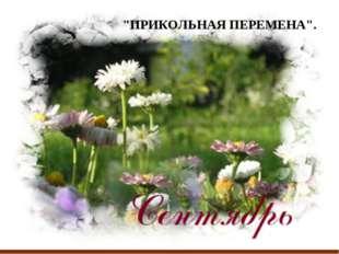 """""""ПРИКОЛЬНАЯ ПЕРЕМЕНА""""."""