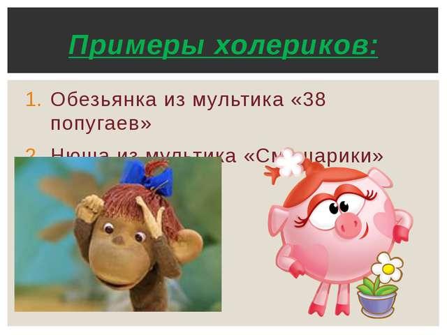 Обезьянка из мультика «38 попугаев» Нюша из мультика «Смешарики» Примеры холе...